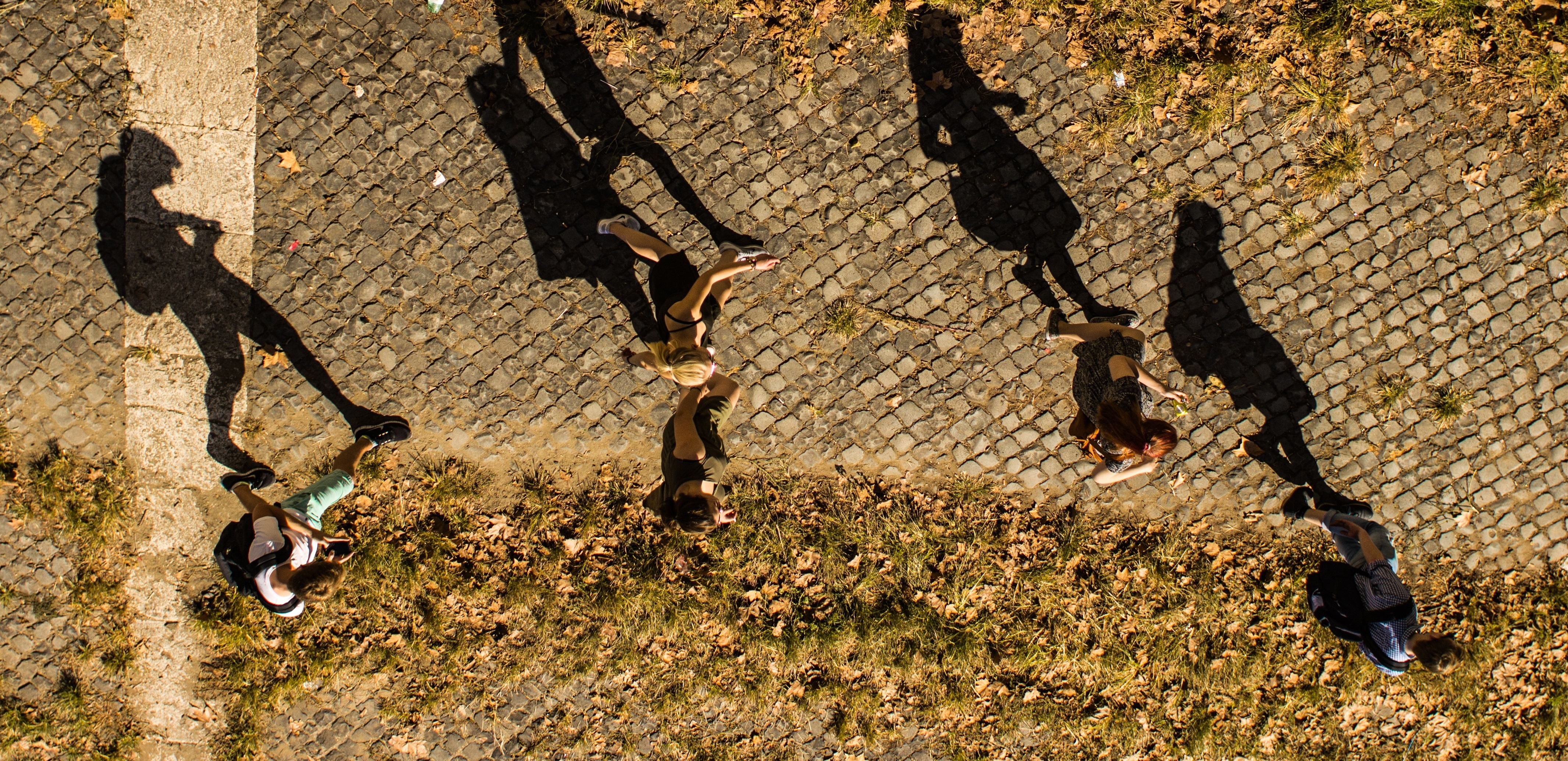 People walking on grassy path with shadows